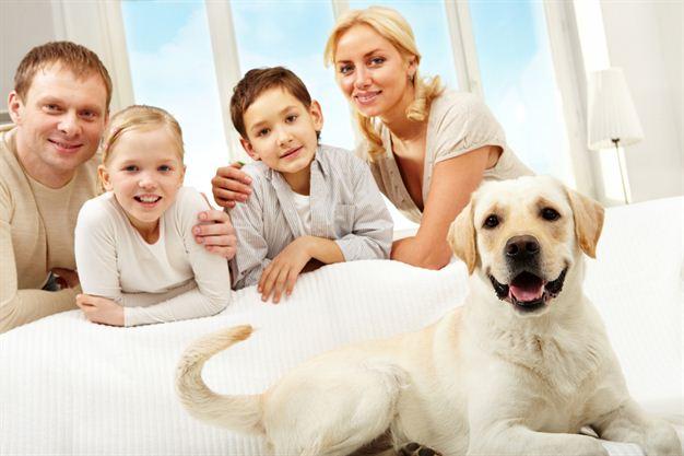 Найкращі породи собак для дітей та сім'ї